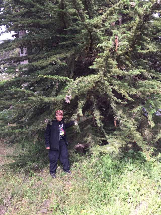 photo of Tony and Tree 2016